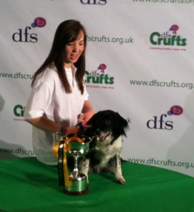 Agility Dog of the Year 2010 Harriet & Sadie