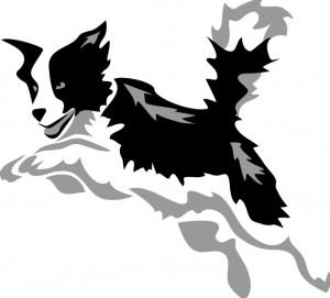 b&w dog jumping